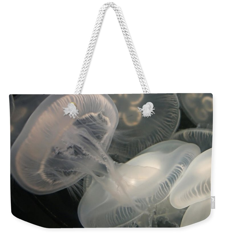 Jellyfish Weekender Tote Bag featuring the photograph Jellyfish by Ernie Echols