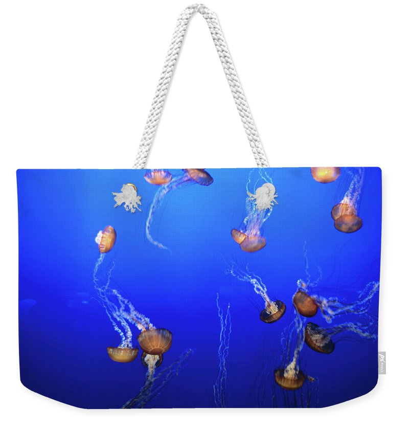 Monterey Bay Aquarium Weekender Tote Bag featuring the photograph Jellyfish In Monterey Bay Aquarium by Holger Leue