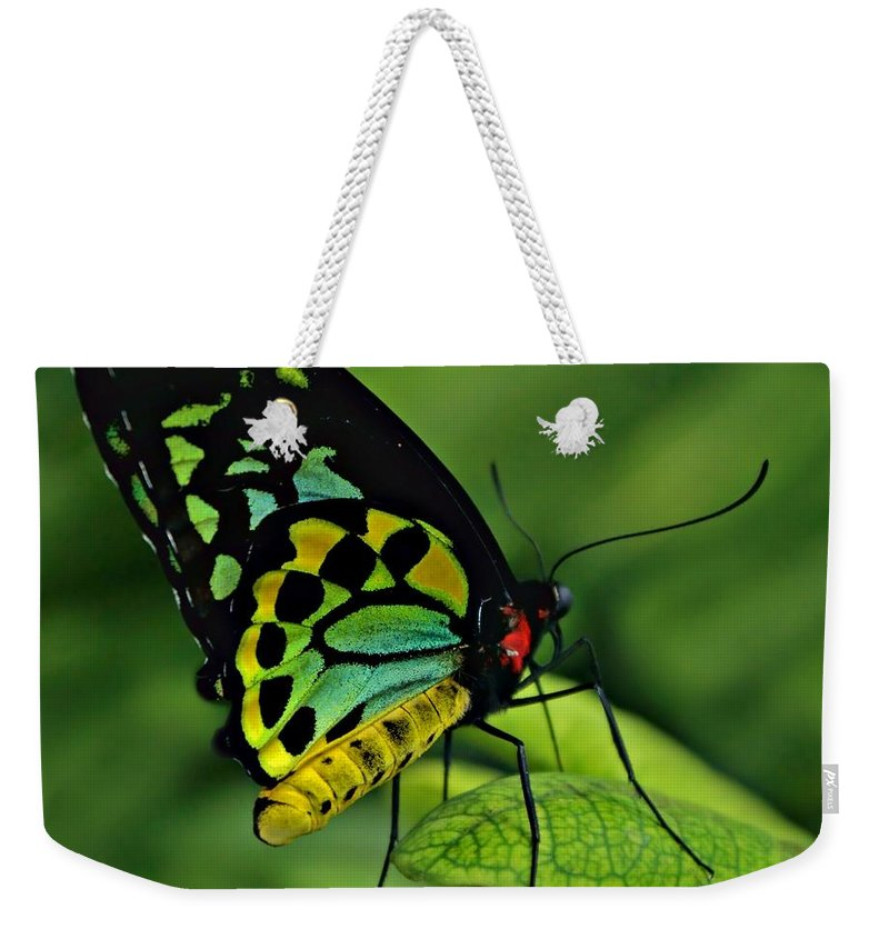 Animal Weekender Tote Bag featuring the photograph Jewelled by Nikolyn McDonald