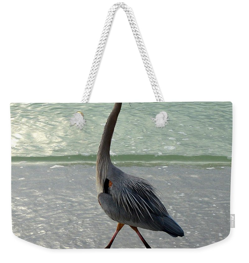 Strutting Weekender Tote Bag featuring the photograph Strutting The Beach by David Lee Thompson