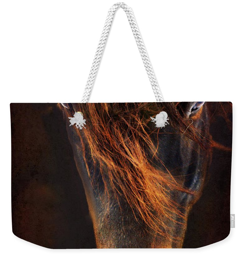 Horse Weekender Tote Bag featuring the photograph Joe by Annette Coady