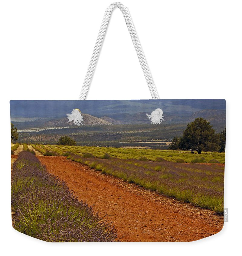 Johnny Weekender Tote Bag featuring the photograph Johnny And The Mountain by Mick Anderson