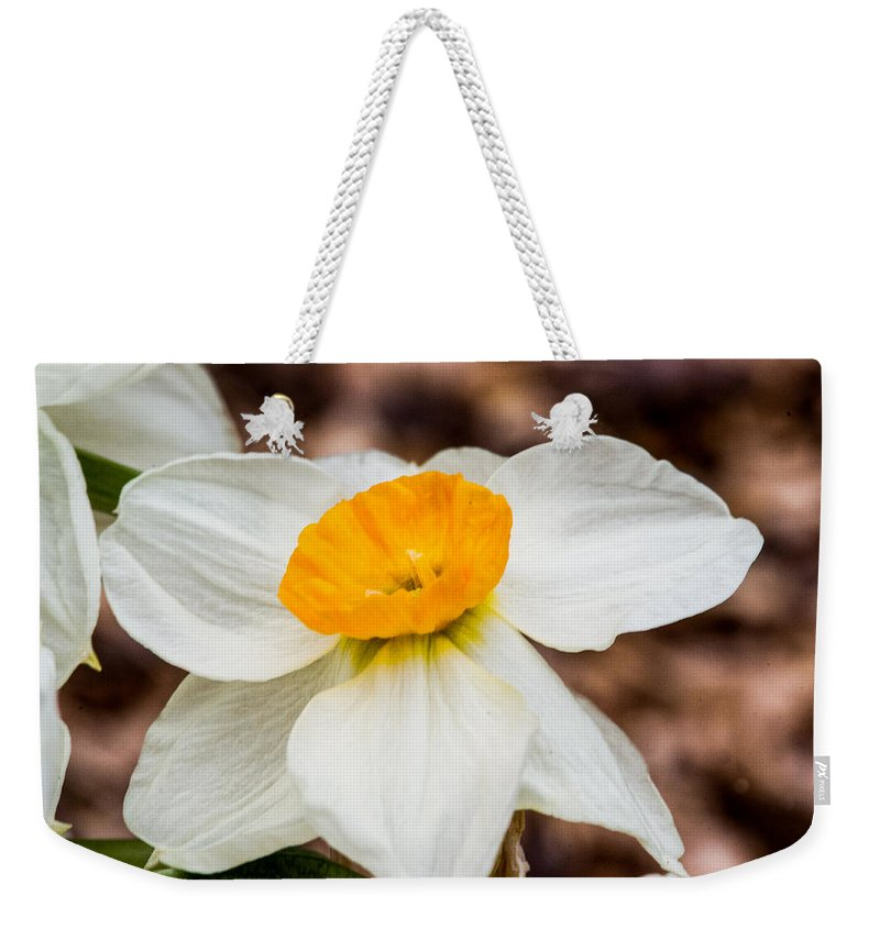 Jonquil Weekender Tote Bag featuring the photograph Jonquil 1 by Douglas Barnett
