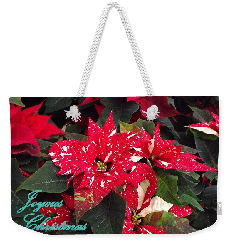 Poinsettia Weekender Tote Bag featuring the photograph Joyous Christmas by Lingfai Leung
