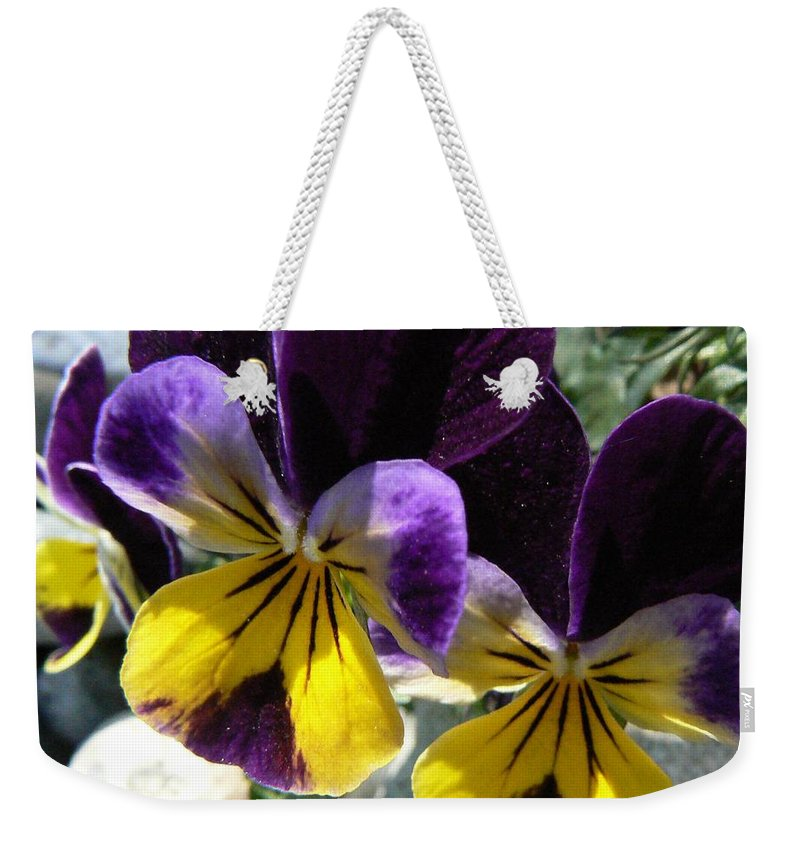 Pansy Weekender Tote Bag featuring the photograph Jump Up And Kiss Me by Barbara St Jean