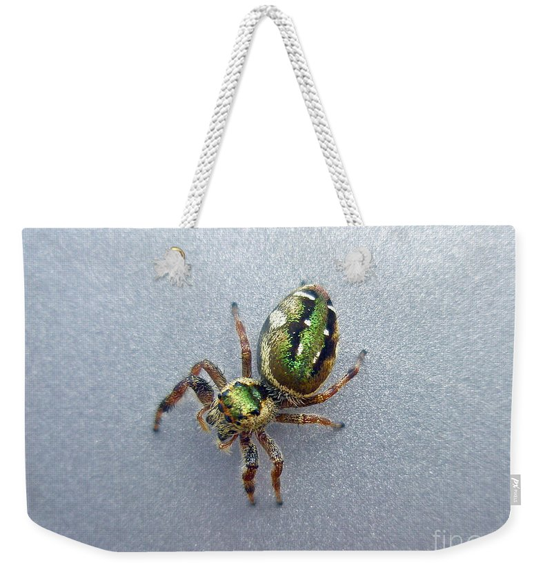 Jumping Weekender Tote Bag featuring the photograph Jumping Spider - Green Salticidae by Mother Nature