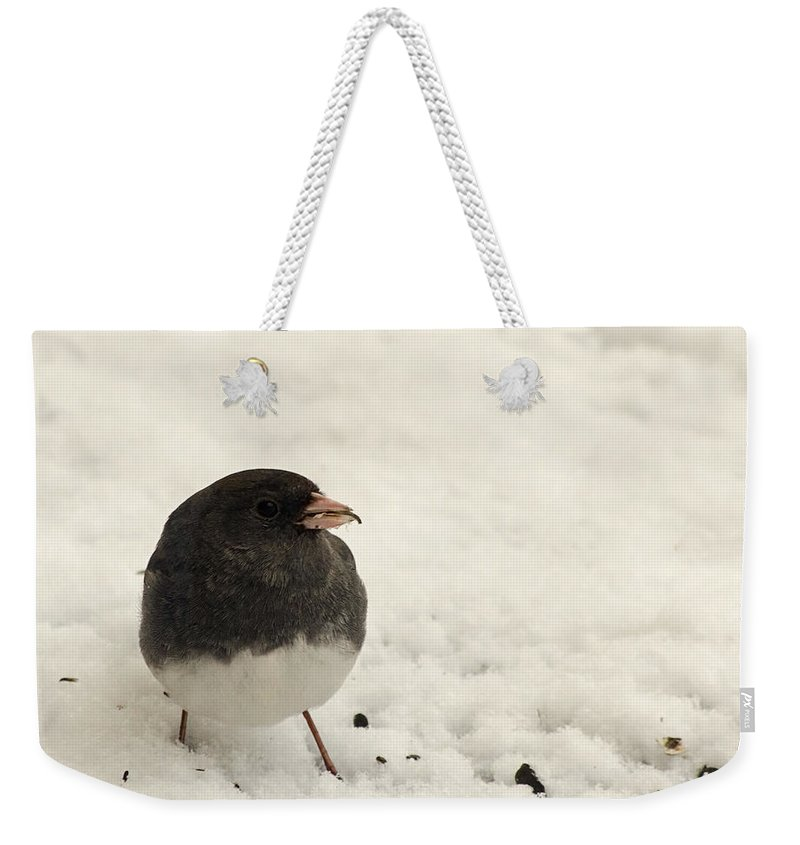 Bird Weekender Tote Bag featuring the photograph Junco In The Snow by Jeff Galbraith