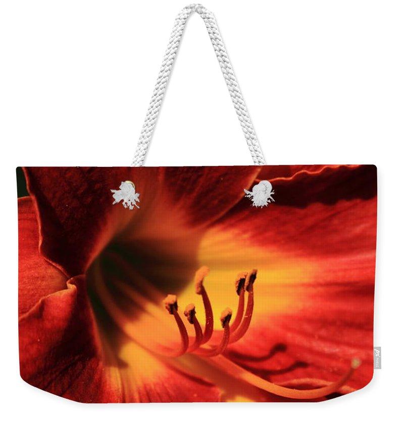 Flower Weekender Tote Bag featuring the photograph June's Best by Reid Callaway