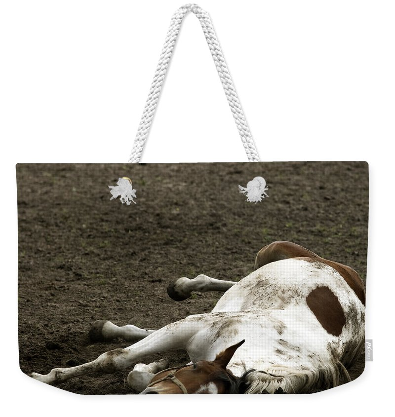 Relax Weekender Tote Bag featuring the photograph Just Relax by Angel Tarantella