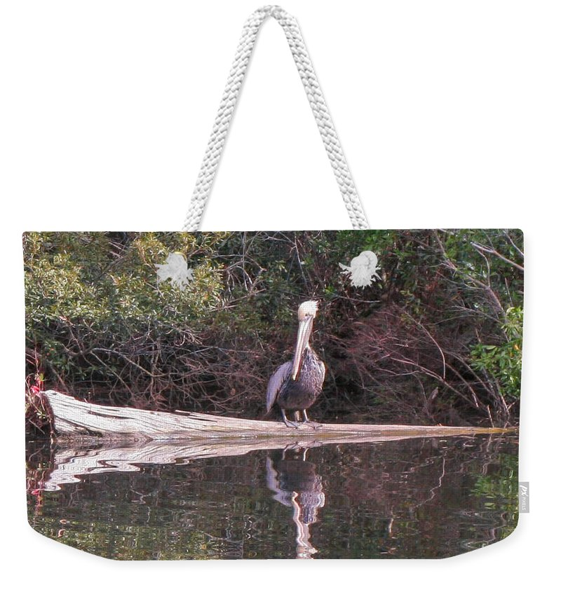 Pelican On A Log Weekender Tote Bag featuring the photograph Just Sittin' On A Log by Mechala Matthews