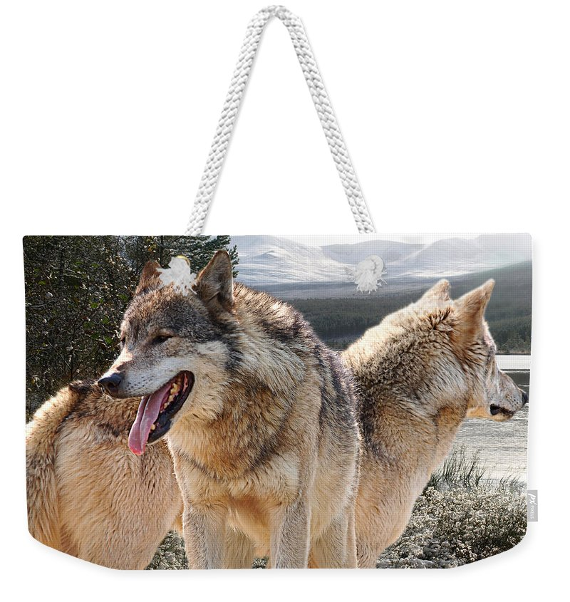 Grey Wolf Weekender Tote Bag featuring the photograph Keeping Watch - Pair Of Wolves by Gill Billington