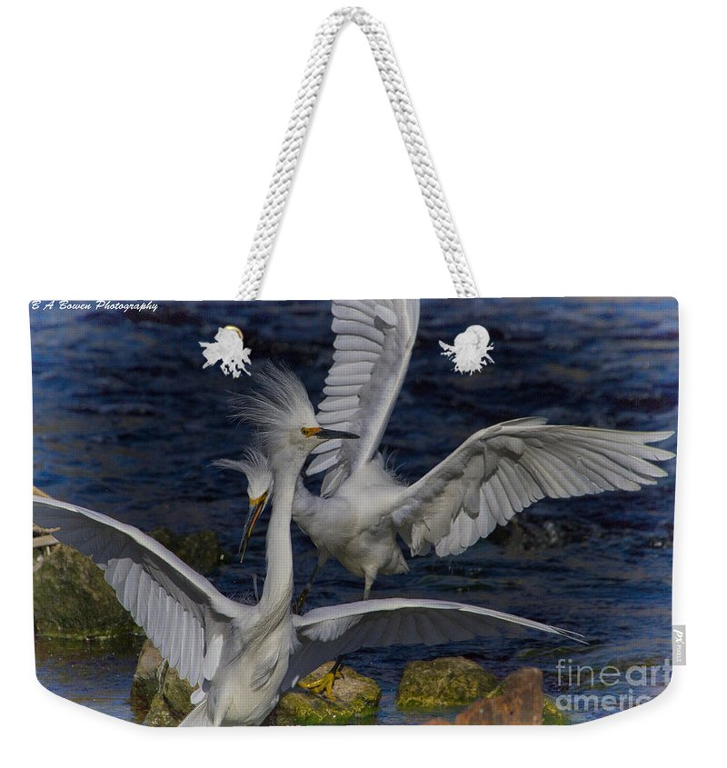 Snowy Egret Weekender Tote Bag featuring the photograph Kerfuffle by Barbara Bowen