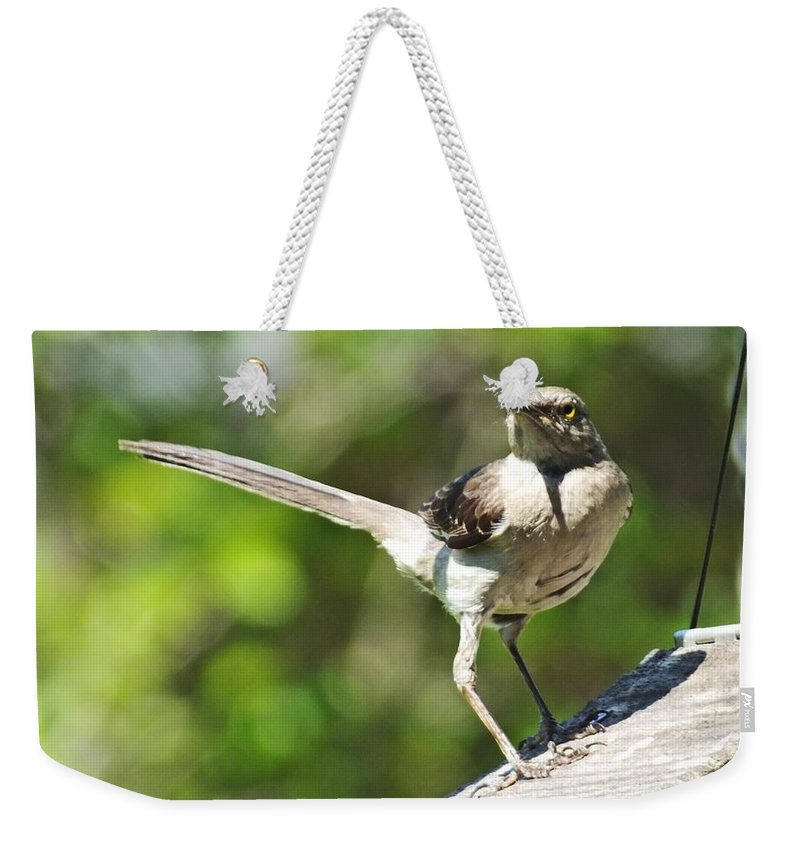 Mockingbird Weekender Tote Bag featuring the photograph King Of The Feeder by Lizi Beard-Ward
