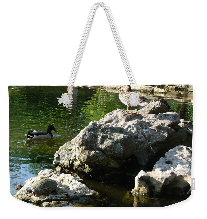 Duck Weekender Tote Bag featuring the photograph King Of The Hill by Jon Cody
