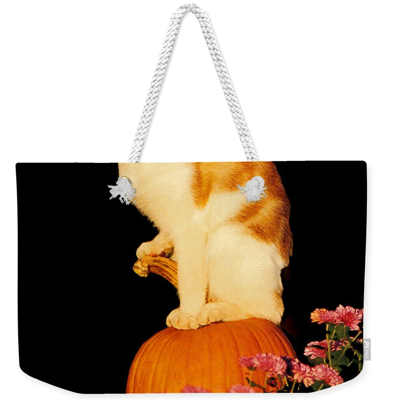 Pumpkin Weekender Tote Bag featuring the photograph King Of The Pumpkin by Peg Urban