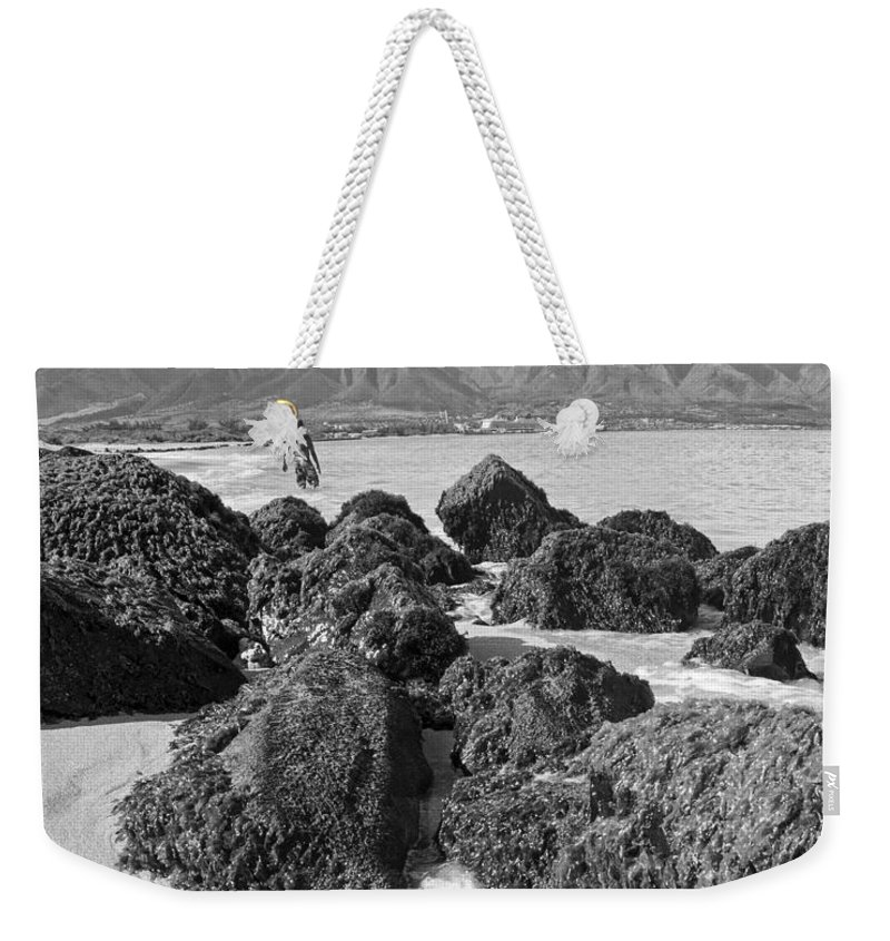 Hawaii Weekender Tote Bag featuring the photograph Kite Beach Maui Hawaii by Edward Fielding