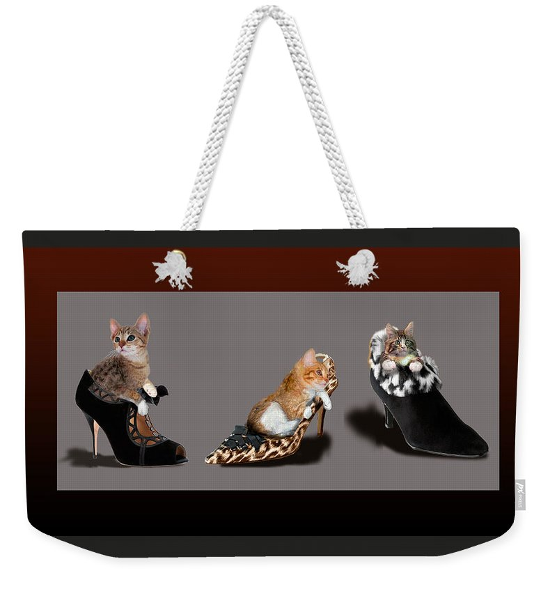 Kittens In Designer Ladies Shoes Weekender Tote Bag featuring the painting Kittens In Designer Ladies Shoes by Regina Femrite