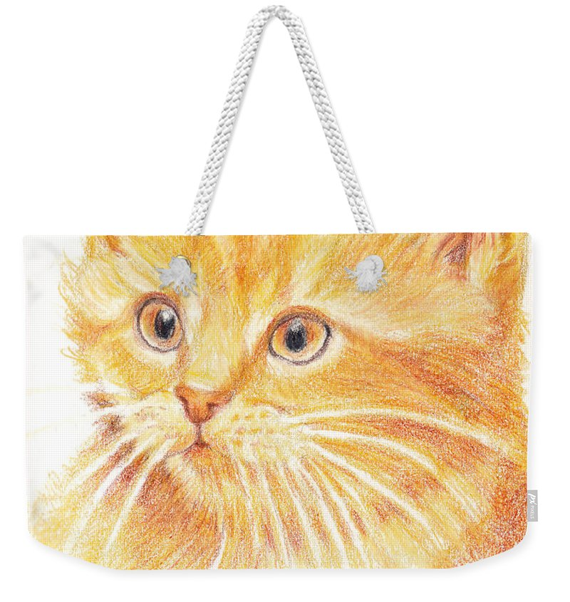 Cats Weekender Tote Bag featuring the painting Kitty Kat Iphone Cases Smart Phones Cells And Mobile Cases Carole Spandau Cbs Art 339 by Carole Spandau