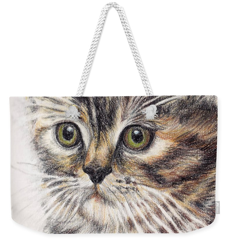 Cats Weekender Tote Bag featuring the painting Kitty Kat Iphone Cases Smart Phones Cells And Mobile Cases Carole Spandau Cbs Art 343 by Carole Spandau