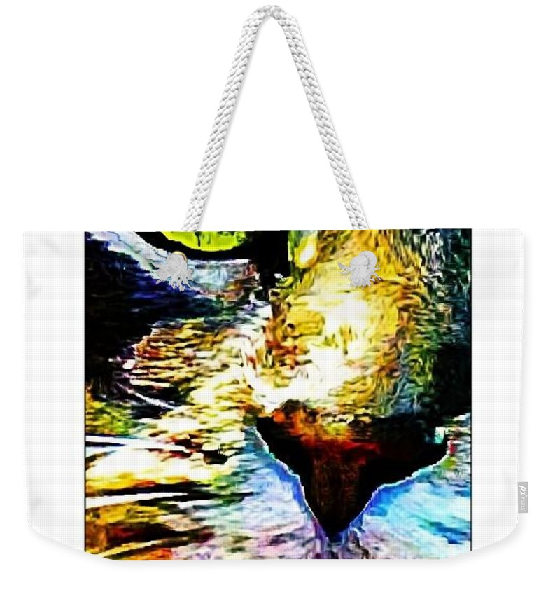 Cat Weekender Tote Bag featuring the photograph Kitty Nosed by Alice Gipson