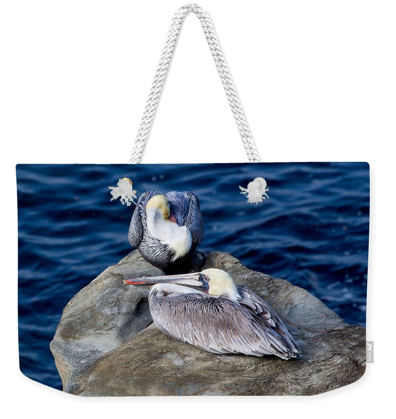 California Weekender Tote Bag featuring the photograph La Jolla Pelicans by Lauri Novak