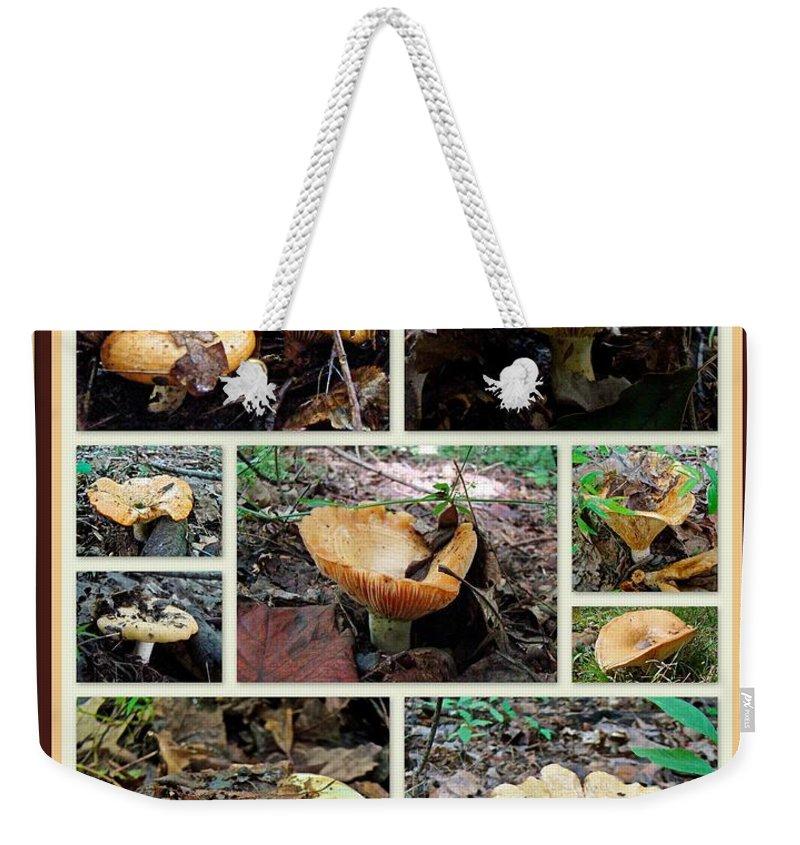Lactarius Torminosus Weekender Tote Bag featuring the photograph Lactarius Torminosus - Yellow Mushrooms by Mother Nature