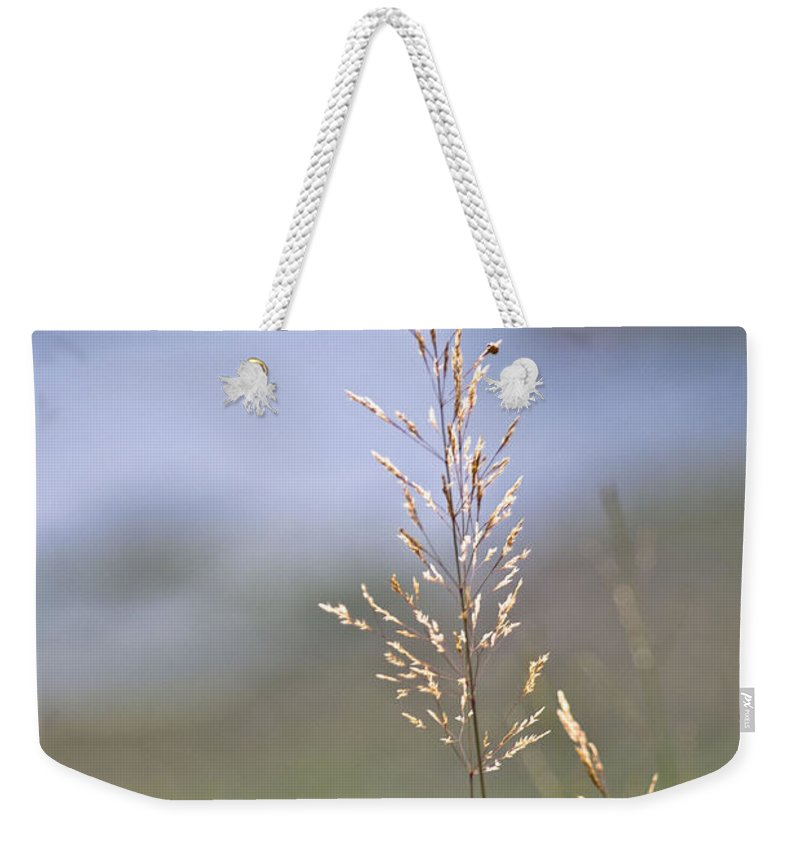 Ireland Digital Photography Weekender Tote Bag featuring the digital art Lades View Meadow by Danielle Summa