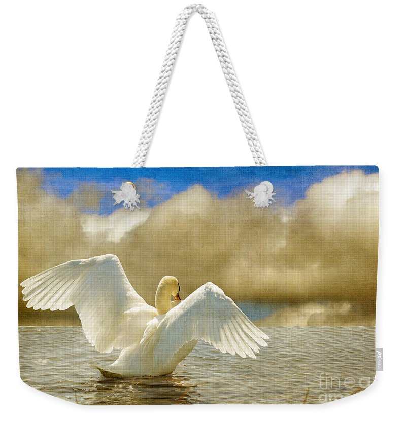 Swans Weekender Tote Bag featuring the photograph Lady-in-waiting by Lois Bryan