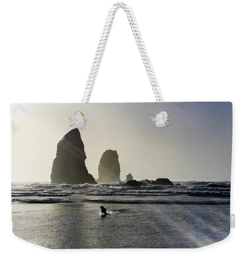 susan Molnar Weekender Tote Bag featuring the photograph Lady Jessica Of The Great Northwest by Susan Molnar