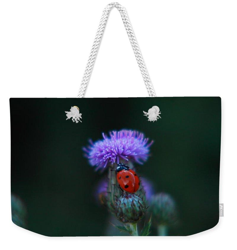 Little Things Weekender Tote Bags
