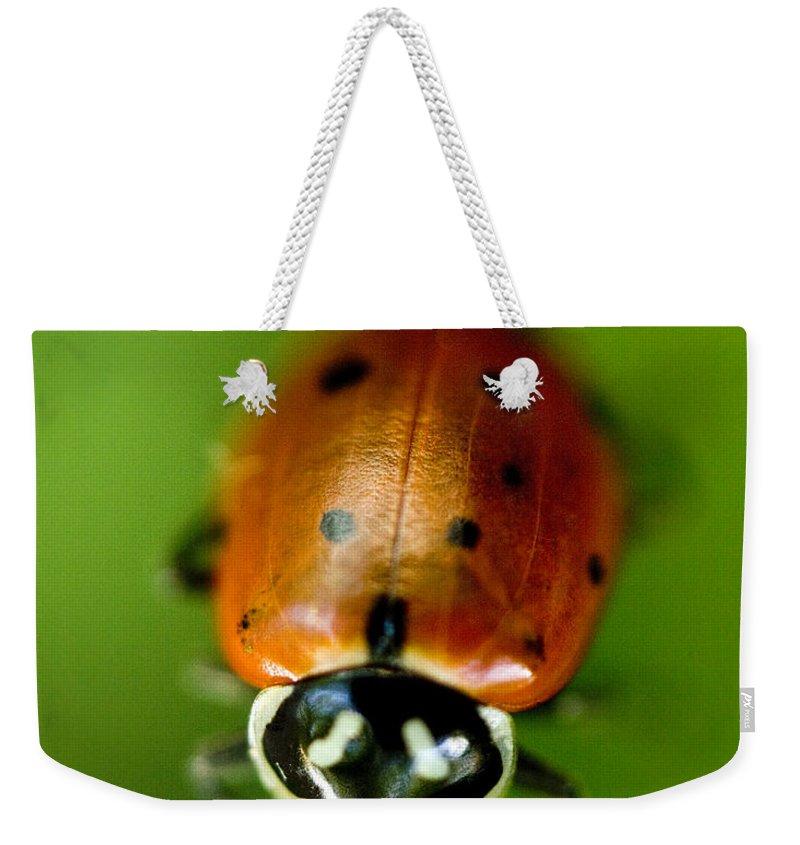 Ladybug Weekender Tote Bags