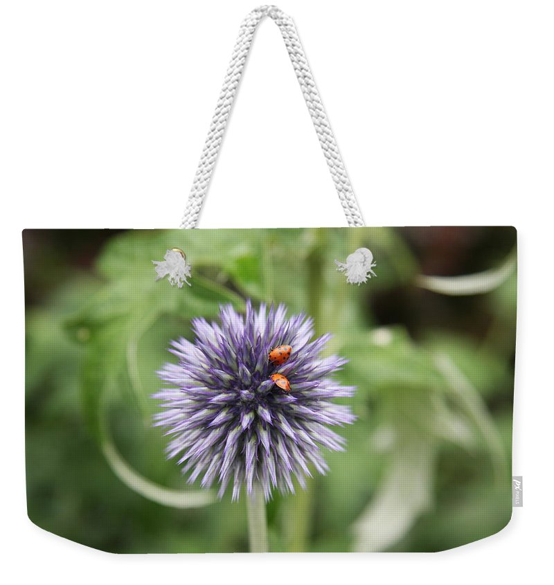 Flower Weekender Tote Bag featuring the photograph Ladybugs by Christiane Schulze Art And Photography