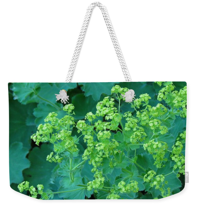 Weekender Tote Bag featuring the photograph Lady's Mantel by MTBobbins Photography