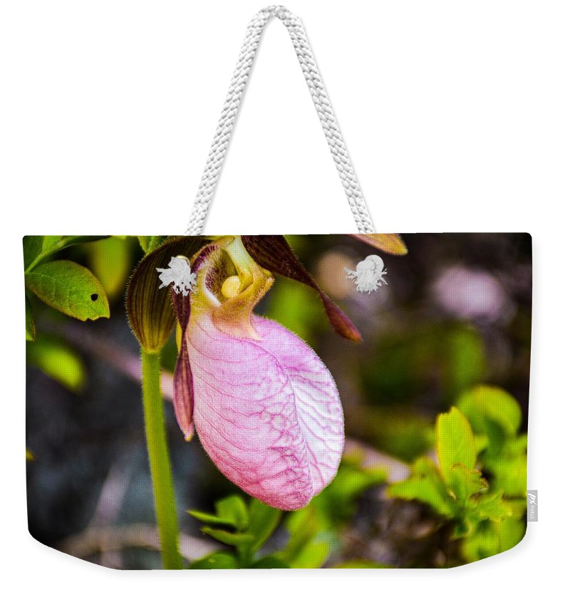 Ladyslipper Weekender Tote Bag featuring the photograph Ladyslipper Wildflower by Sherman Perry