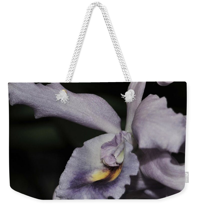 Orchid Weekender Tote Bag featuring the photograph Laeliocattleya Blue Boy 1 Of 2 by Terri Winkler