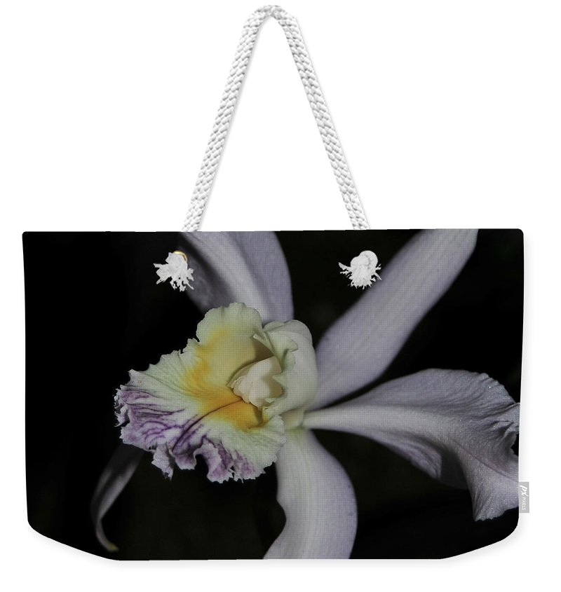 Lavender Orchid Weekender Tote Bag featuring the photograph Laeliocattleya Jacki Stidham by Terri Winkler
