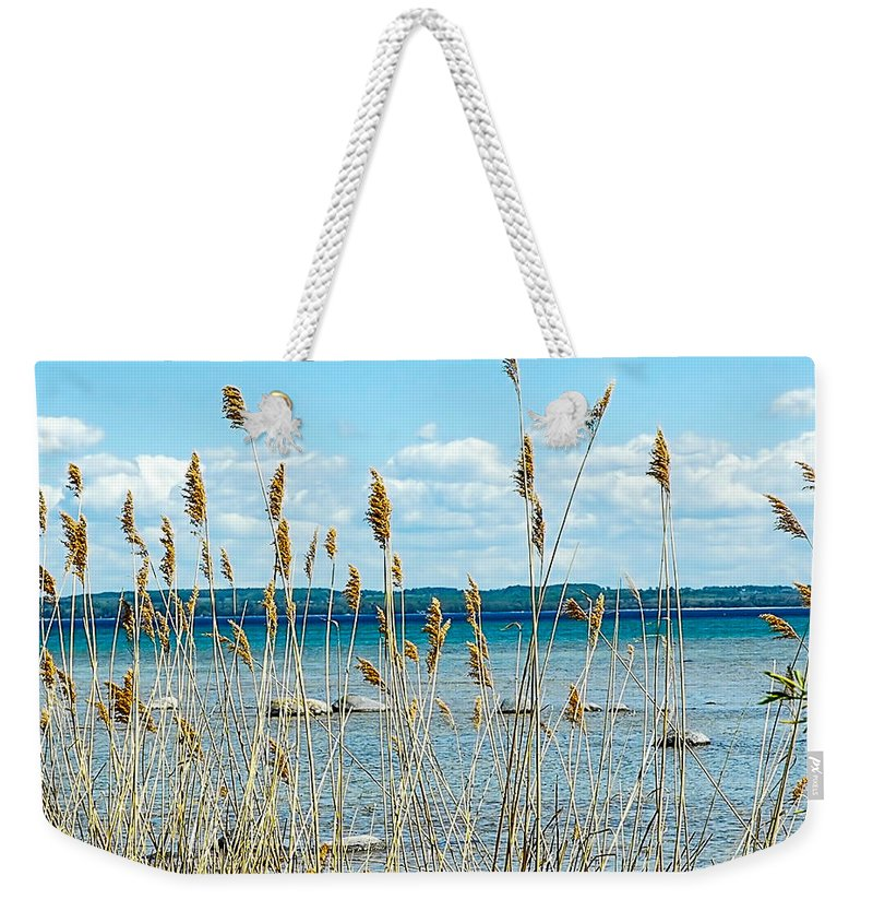 Lake Michigan Shore Weekender Tote Bag featuring the photograph Lake Michigan Shore Grasses by LeeAnn McLaneGoetz McLaneGoetzStudioLLCcom