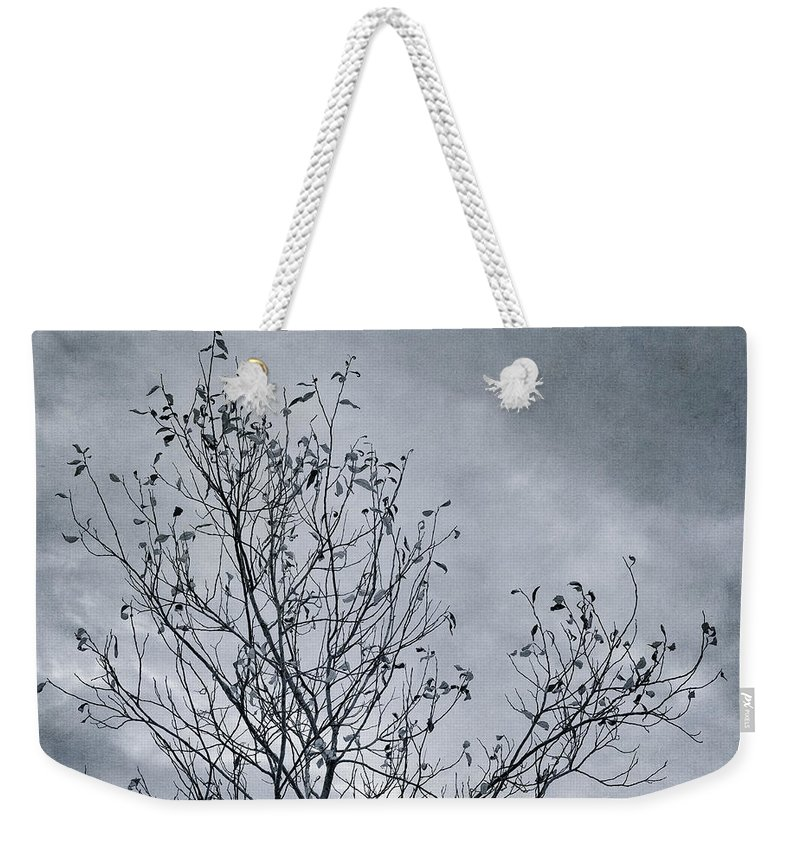Tree Weekender Tote Bag featuring the photograph Land Shapes 16 by Priska Wettstein