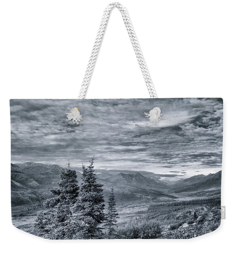 Tree Weekender Tote Bag featuring the photograph Land Shapes 18 by Priska Wettstein