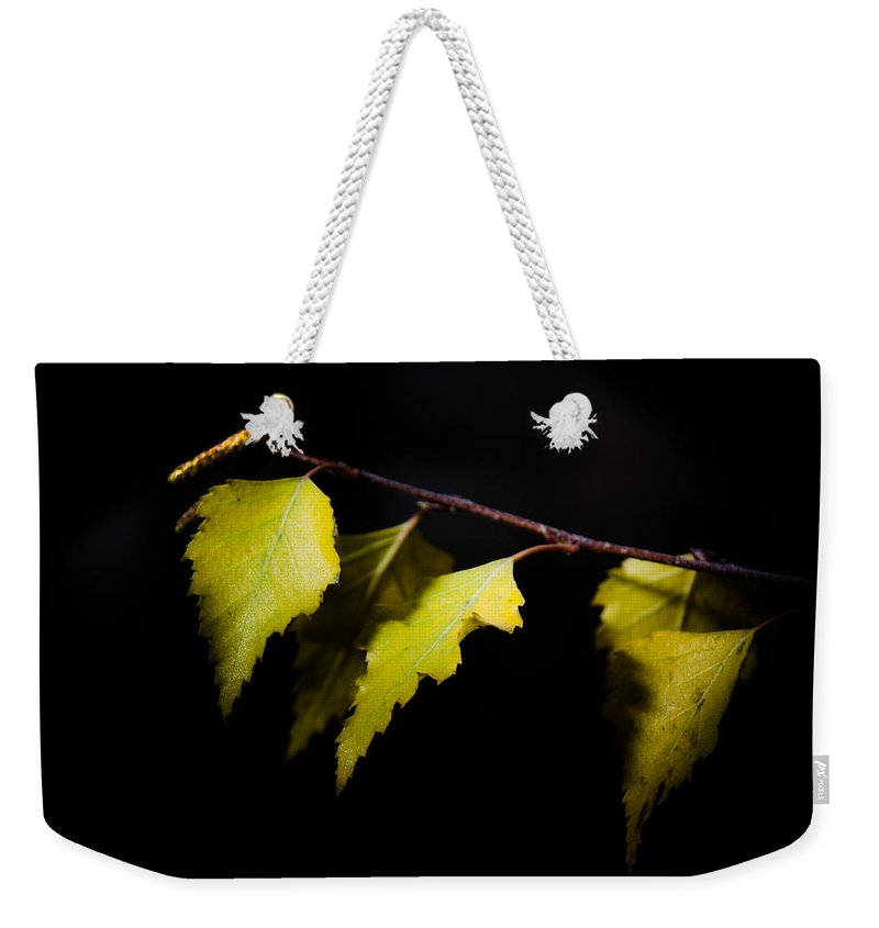 Autumn Weekender Tote Bag featuring the photograph Last Autumn Gifts by Michael Goyberg