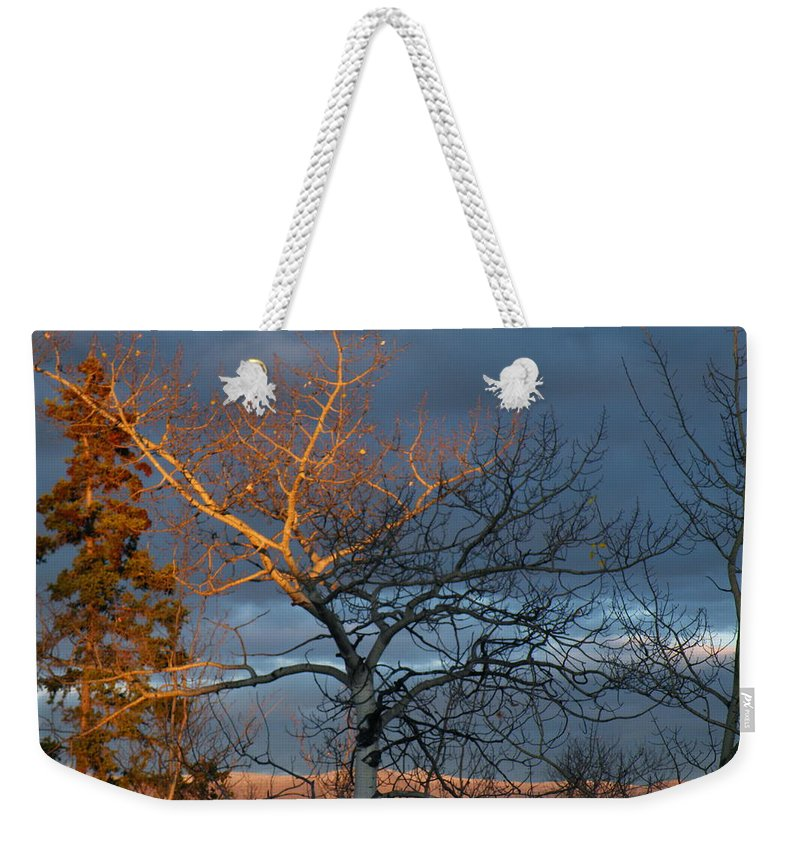 Last Weekender Tote Bag featuring the photograph Last Light Last Leaves by Brian Boyle