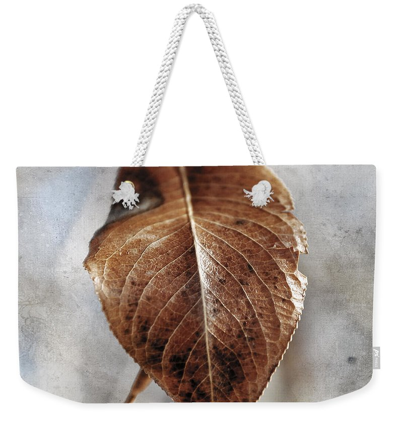 Leaf Weekender Tote Bag featuring the photograph Last Of Cold by The Artist Project