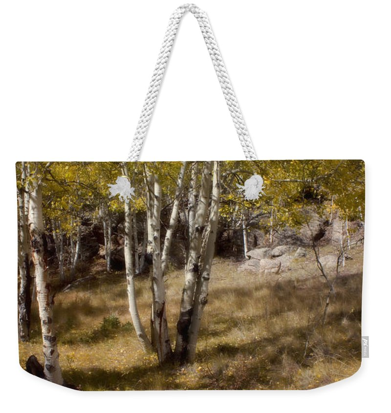Fall Weekender Tote Bag featuring the photograph Late Autumn by Ellen Heaverlo