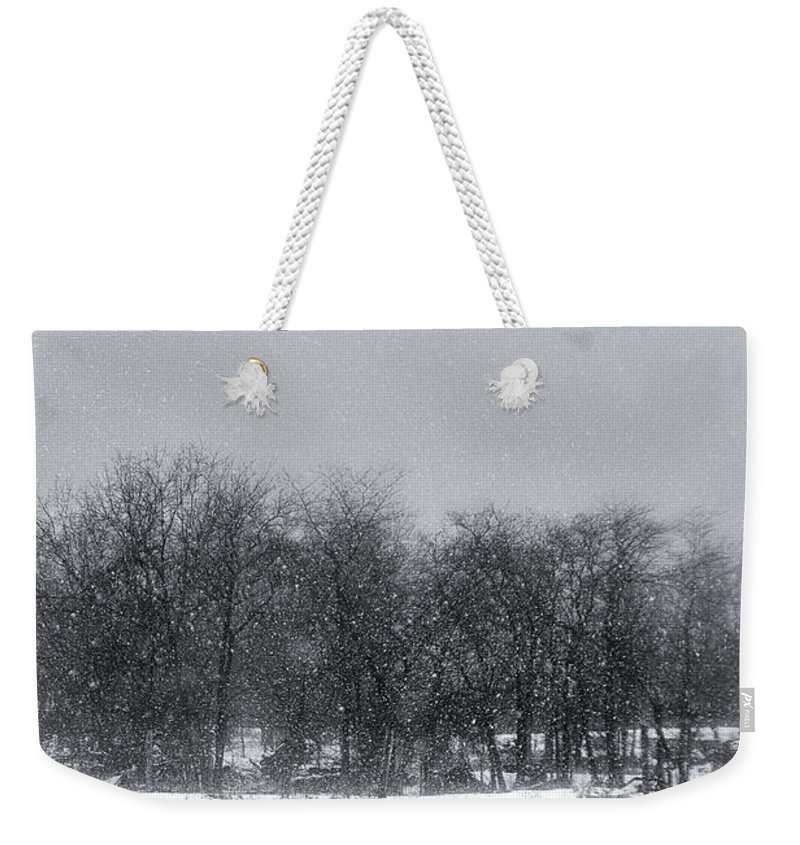Michele Weekender Tote Bag featuring the photograph Late Migration by Michele Steffey