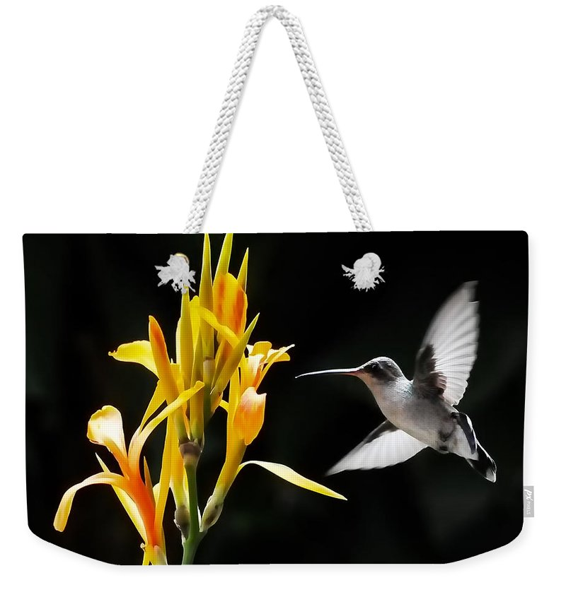 Black And White Hummingbirds Weekender Tote Bag featuring the photograph Late Night Dinner by David Perry Lawrence