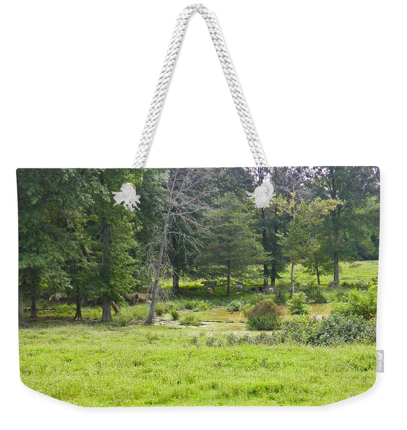 Cattle Weekender Tote Bag featuring the photograph Late Summer By The Pond by Nick Kirby