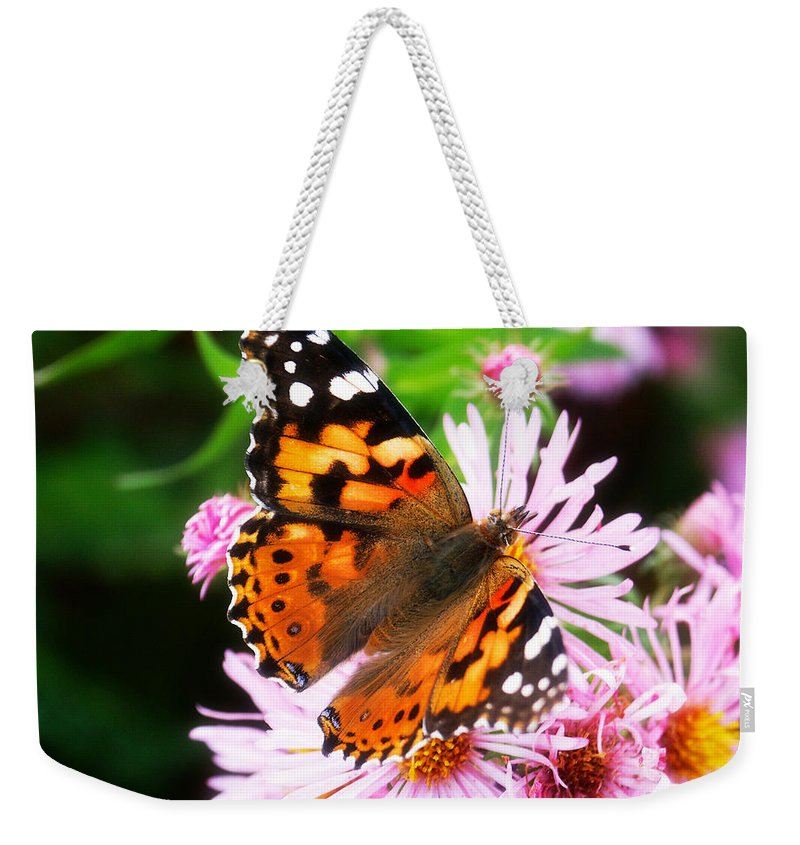 Flower Weekender Tote Bag featuring the photograph Late Summer Painted Lady by Marilyn Hunt