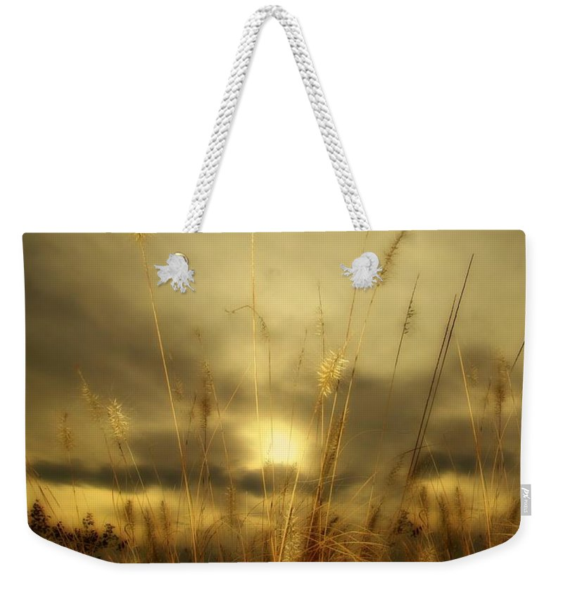Sunset Weekender Tote Bag featuring the photograph Late Summer Sun Through The High Grass by Gothicrow Images