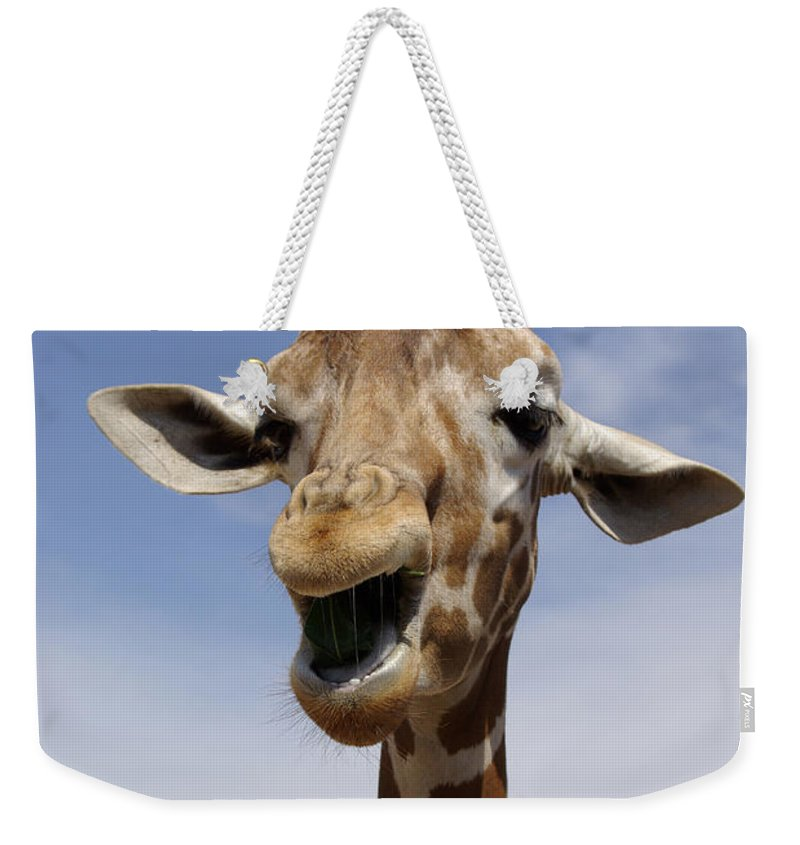 Laugh Weekender Tote Bag featuring the photograph Laughing Giraffe by Jim And Emily Bush