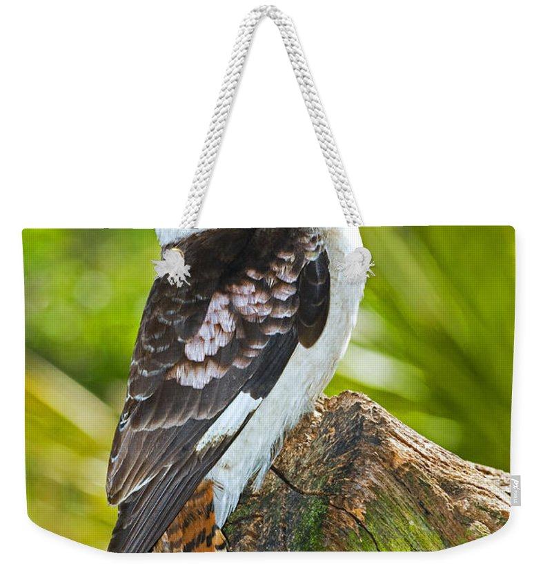 Nature Weekender Tote Bag featuring the photograph Laughing Kookaburra by Millard H. Sharp